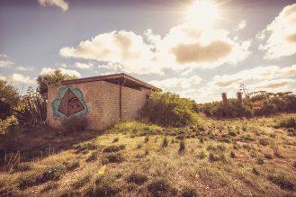 Arizona Cactus Ranch