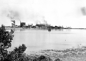 Torrens Island, from east side of river