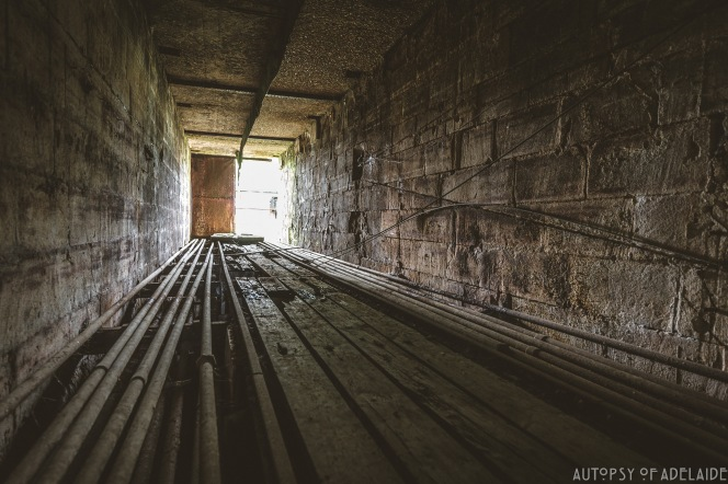 The Sawmill-15