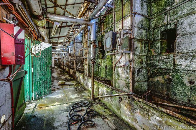 Industrial Disease-34